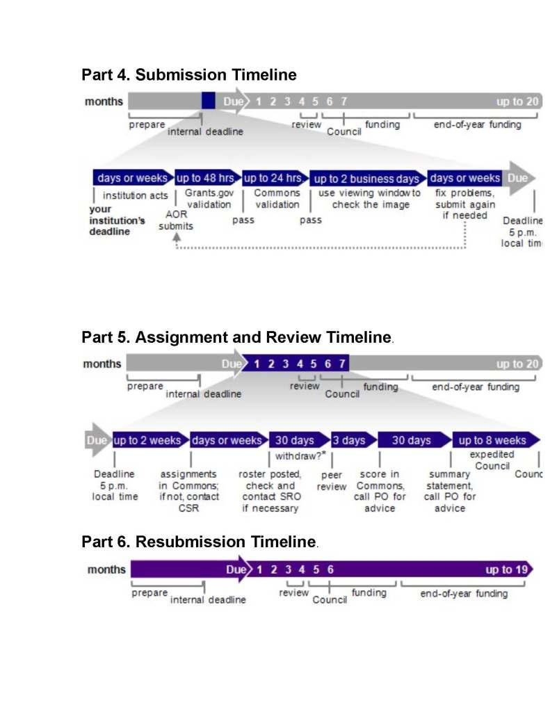 NIH Timelines_Page_2